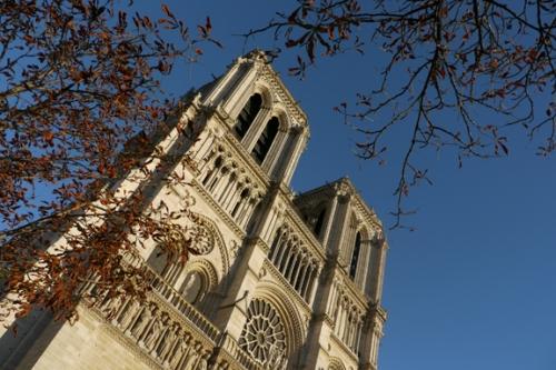 Notre Dame 1030644 BLOG
