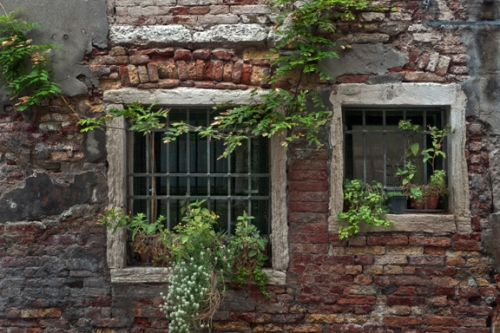 Window garden 1310863 FB