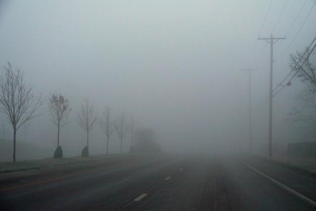 Fog 1000489 BLOG