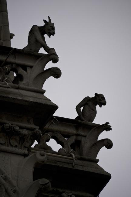 Notre Dame Gargoyles 1010303 DES