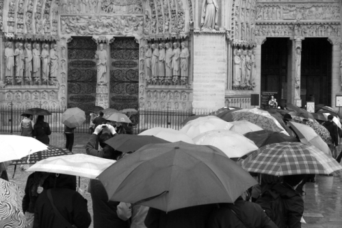 Notre dame in rain 1230953 DES