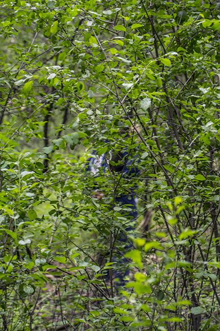 Pam in woods 1080460 FB