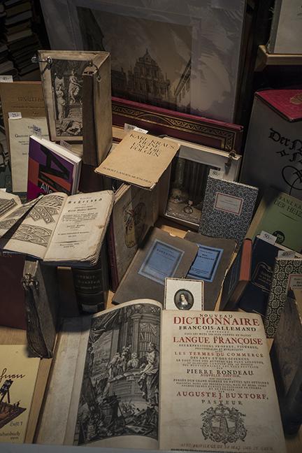 Heidelberg bookstore 1030395 BLOG