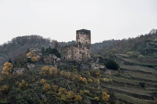 Rhine castle 1020781 BLOG