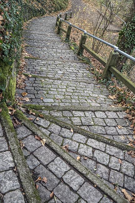 Freiburg path 1040358 BLOG