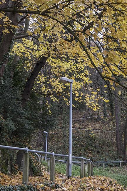 Freiburg paths 1040410 BLOG