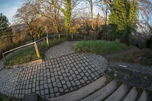 Freiburg paths 1040886 BLOG
