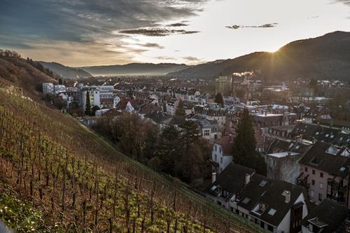 Guten Morgen Freiburg 1040911 BLOG