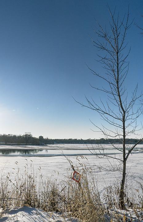 Como lake tree 1280218 bLOG