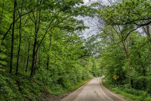 Frontenac woods 1320120 BLOG