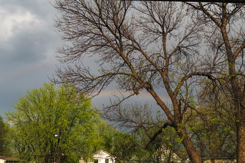 Rainbow 1310645 BLOG