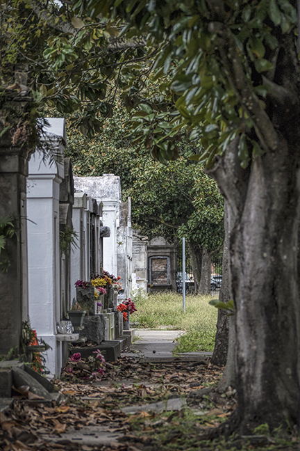 Cemetery 1170851 BLOG