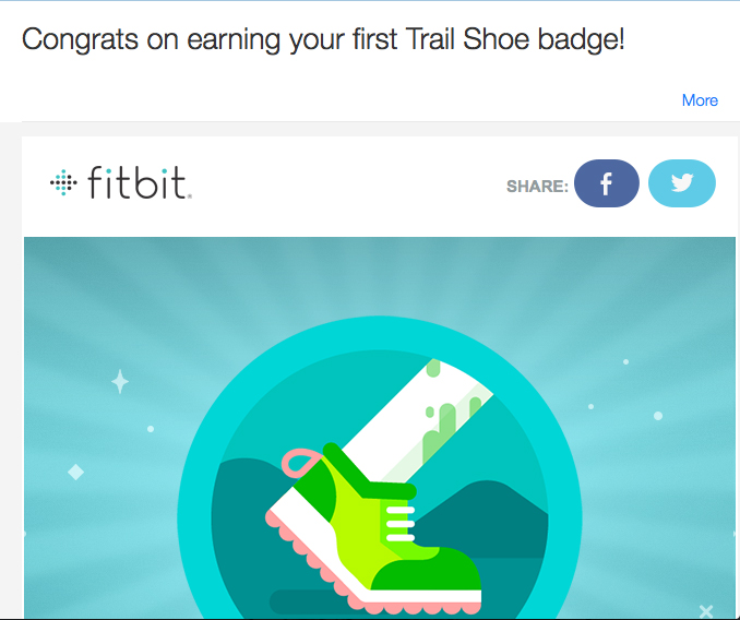 Trail Shoe Badge Fitbit BLOG