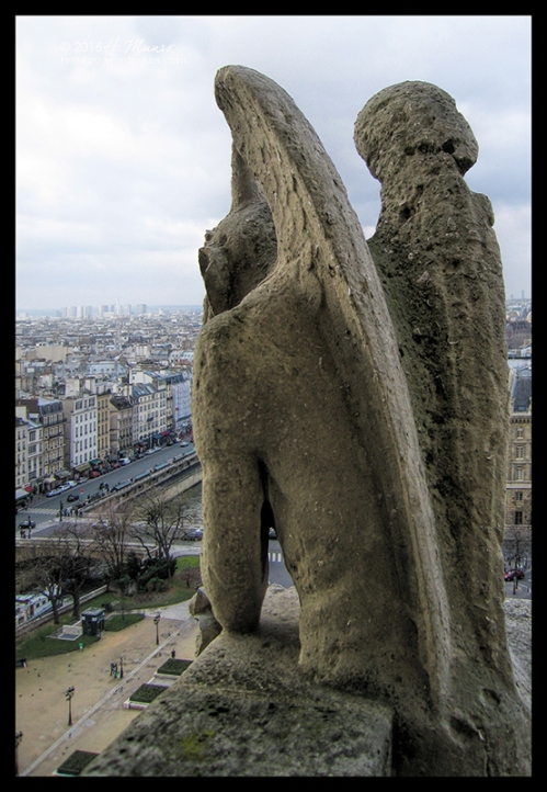 Notre Dame Gargoyle 8148 CR CL BLOG