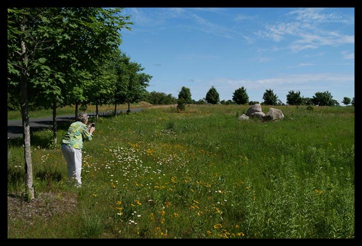 Jackson Meadow 1000153 BLOG