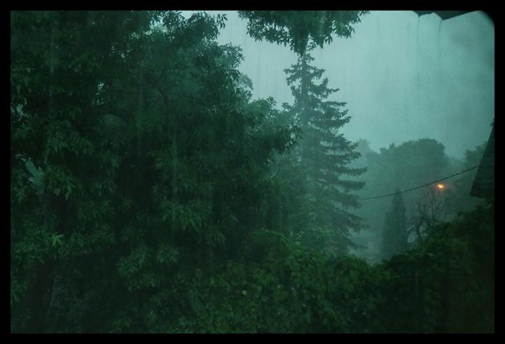 Storm 1000423 BLOG