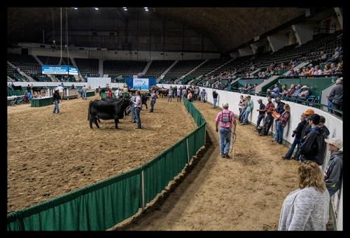 State Fair 1040367 BLOG