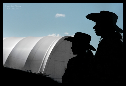 state-fair-horses-1180395-blog