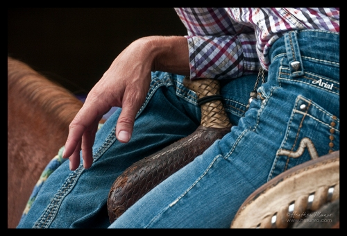 state-fair-rider-1300040-blog