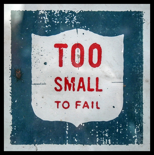 too-small-to-fail-1010152-blog