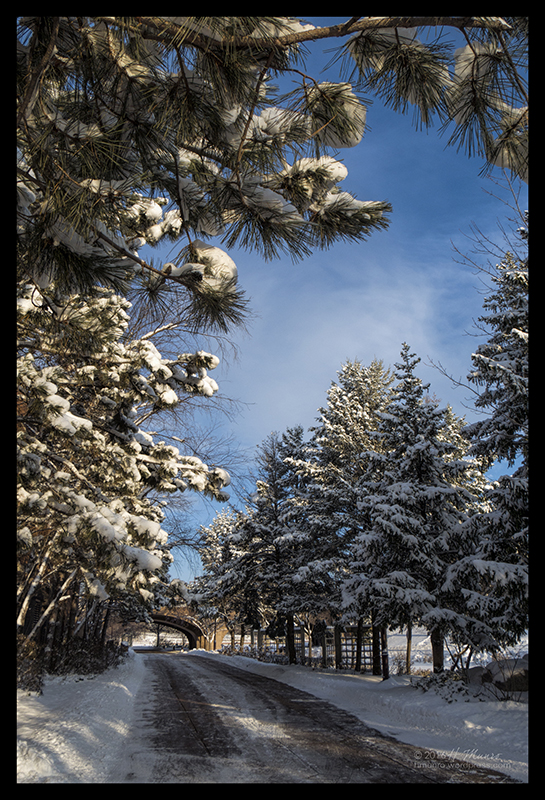 Centennial snow 1710295 BLOG