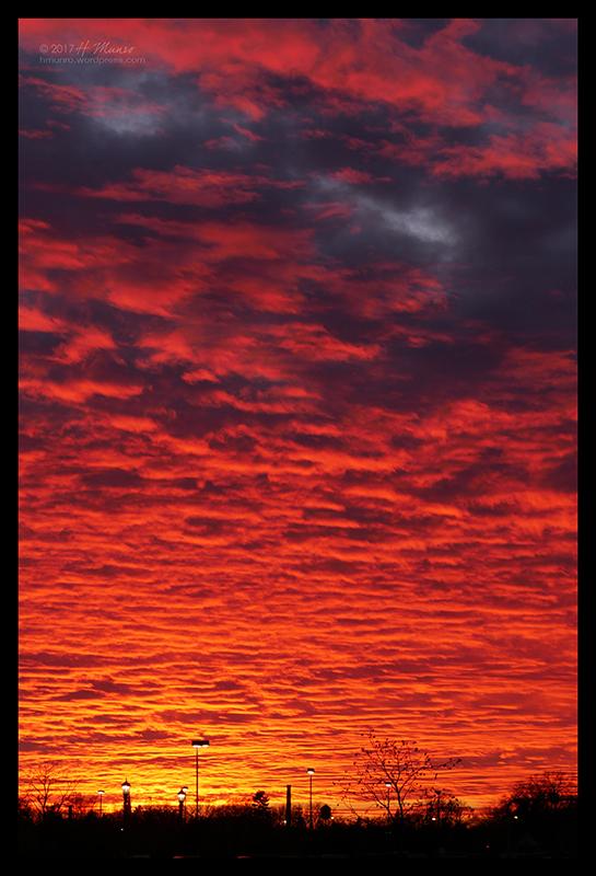 Sunset 1060958 BLOG