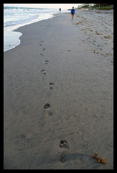 Beach 1030765 BLOG
