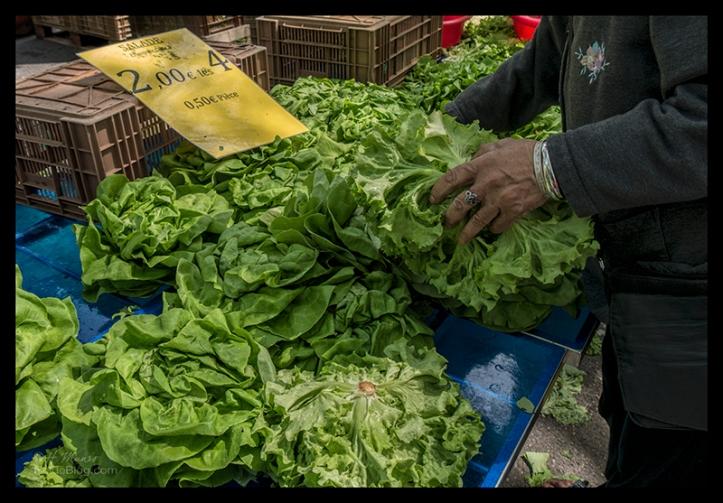 Arles market 1700417 BLOG