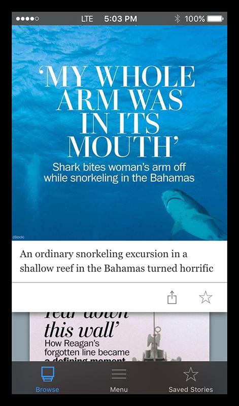 Shark vacation in Bahamas IMG_5979 BLOG