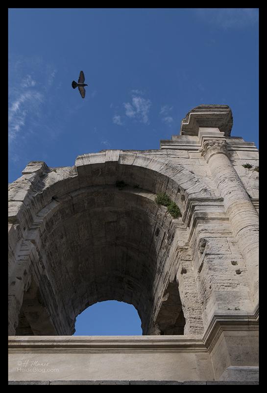 Colosseum 1690769 BLOG