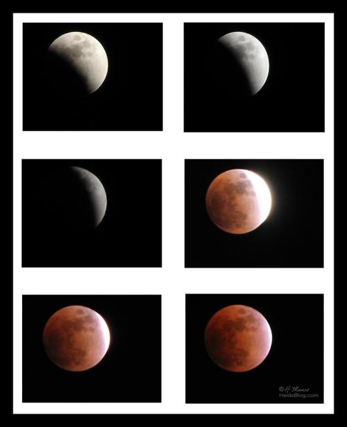 Lunar eclipse BLOG