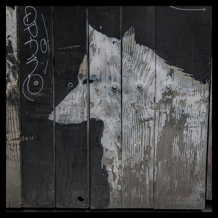 Street art 1700526 BLOG