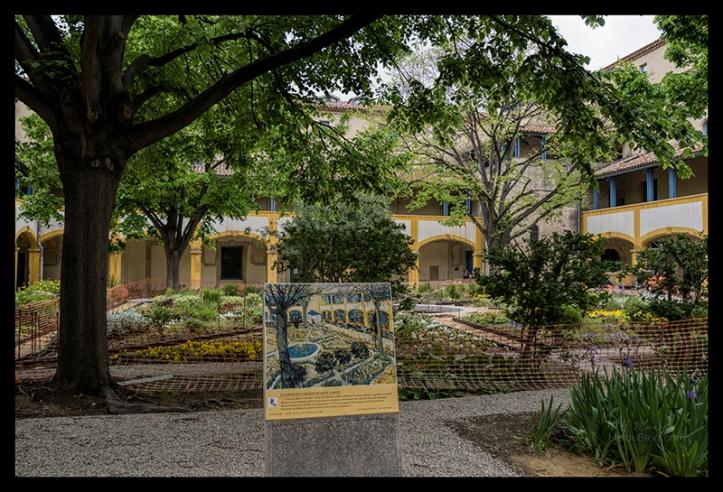 Van Gogh Hospital 1710936 BLOG
