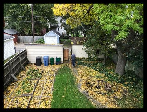 IMG_6612 last lawn mow BLOG