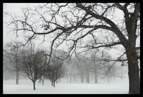 Blizzard 2018 1820981 CC BLOG