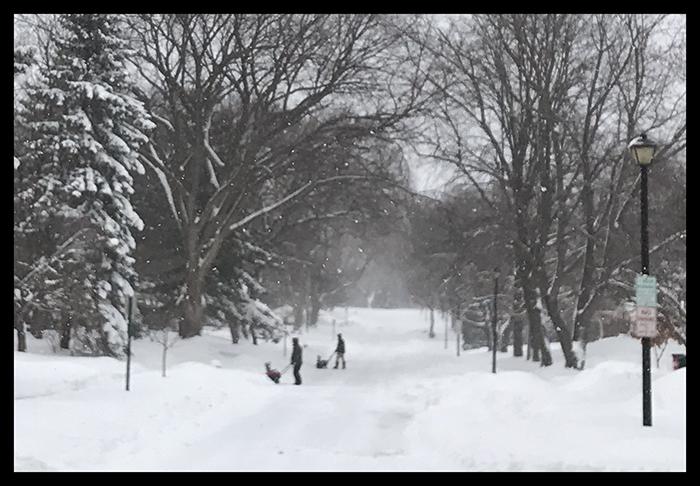 Dueling snowblowers IMG_8537 BLOG