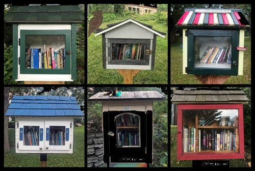 Little Free Libraries BLOG