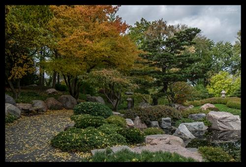 Como Japanese garden 1360187 BLOG