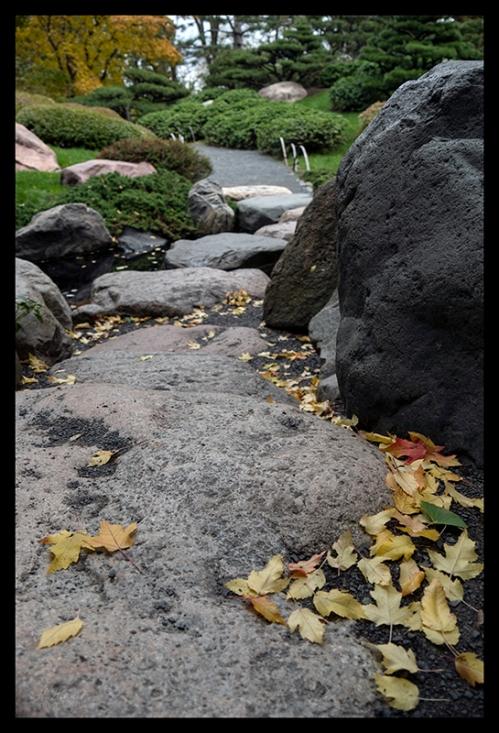 Como Japanese garden 1360195 BLOG