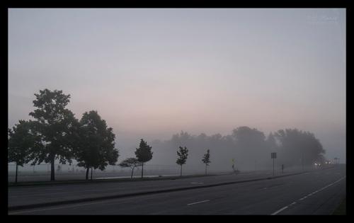 Fog 1310359 CR BLOG