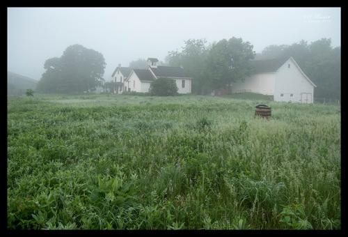 Gibbs farm 1310431 BLOG