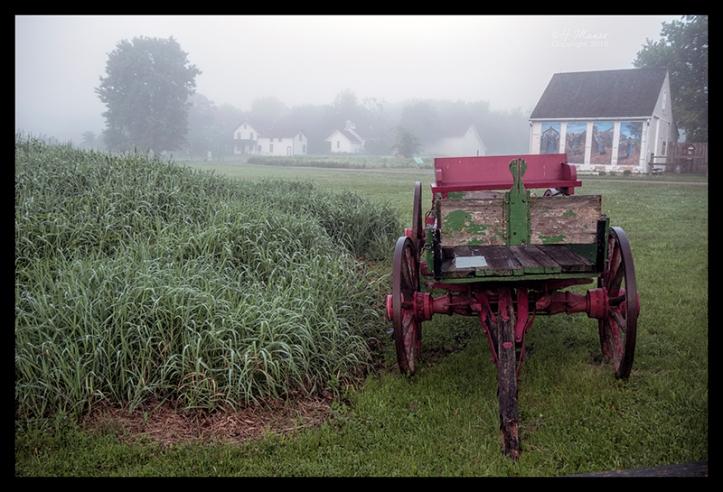 GIbbs Farm fog 1310415 cl cc BLOG