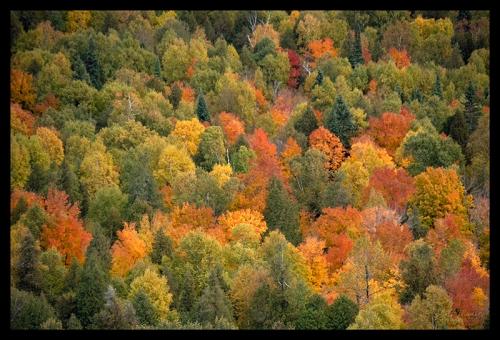 Oberg Mountain vista 1350518 BLOG