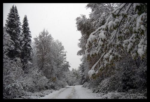 Road 1340796 BLOG