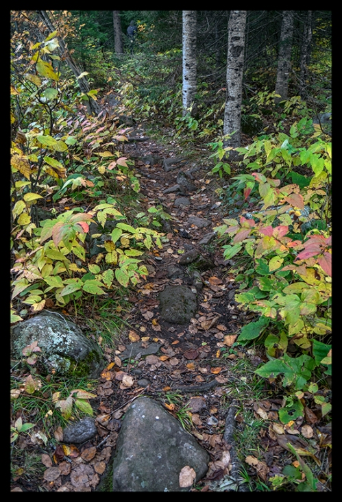 Rugged path 1350755 BLOG