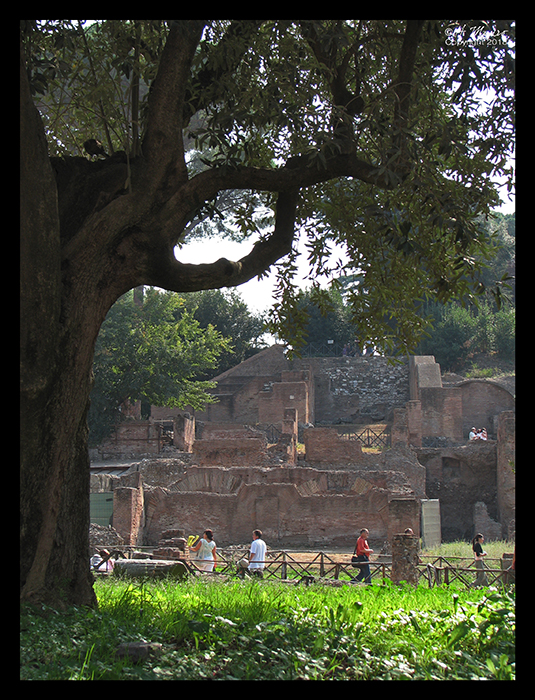 Rome Forum 1 BLOG