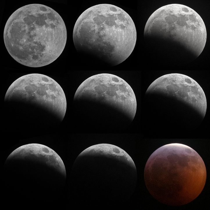 super wolf blood moon fb2