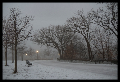 Foggy park bench 1390034 BLOG