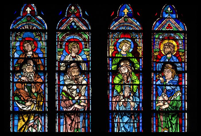 Notre Dame rose 1010406 BLOG