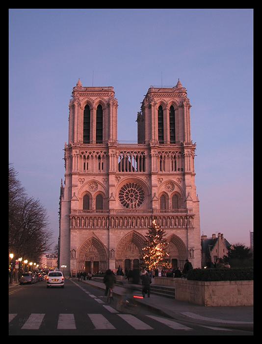 Pink Notre Dame BLOG